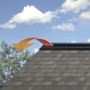 roofpic